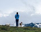 [Top of the world] - mountain ridge, clouds, snow, dogs, person, hiker, backpacking